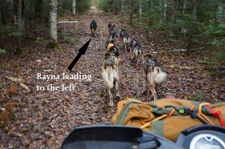 Rayna leading to the left
