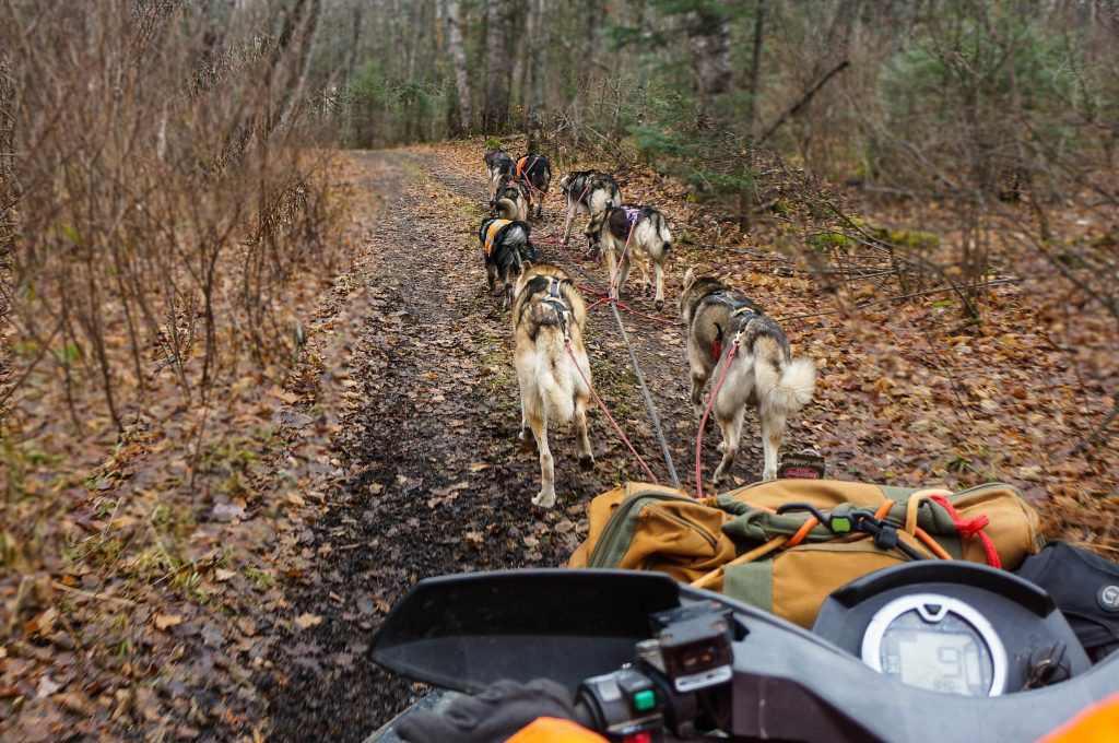 Dog Sled Training with ATV