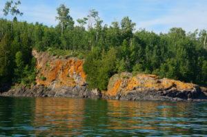 Butterwort Cliffs