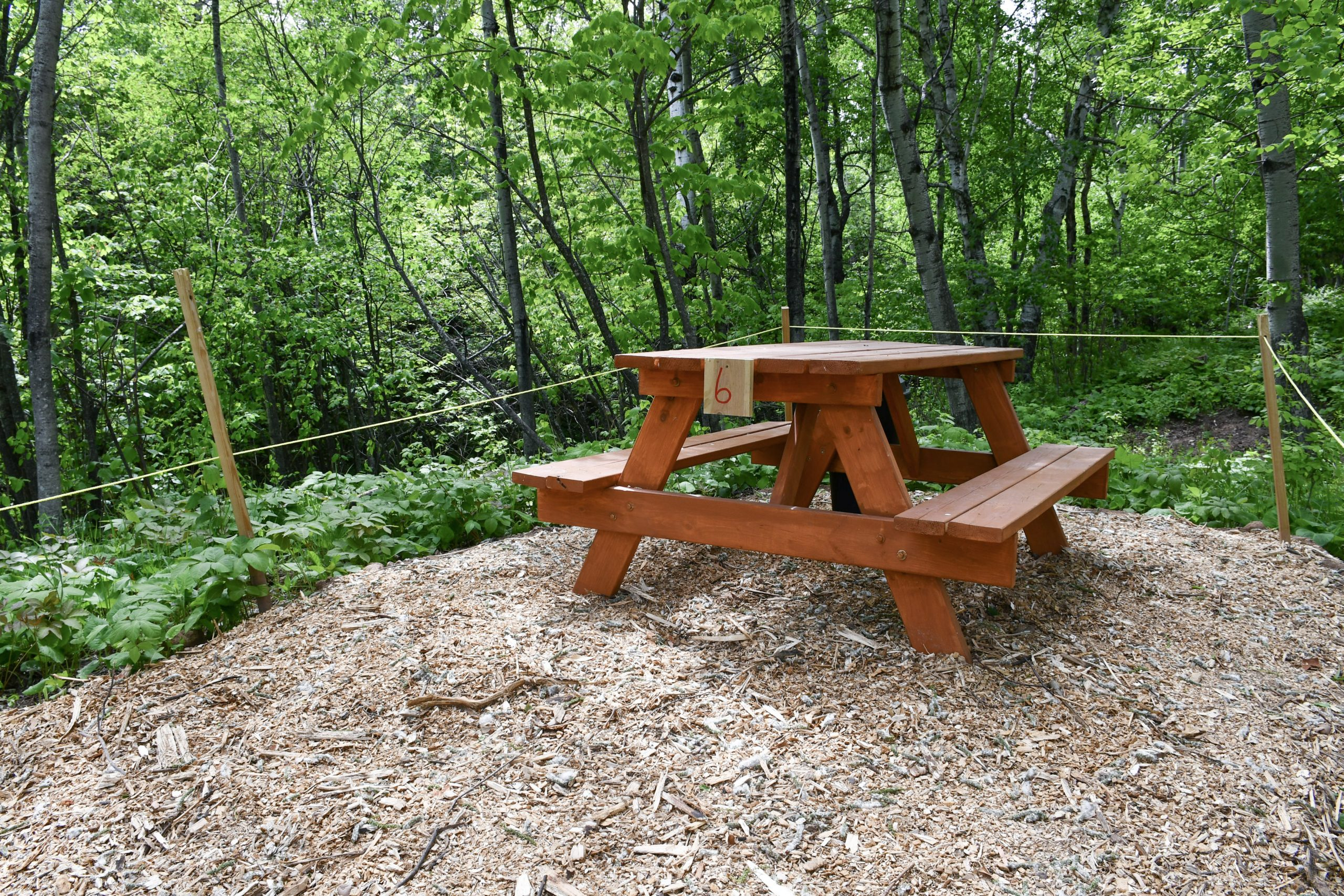 Picnic areas at the North Shore Adventure Park