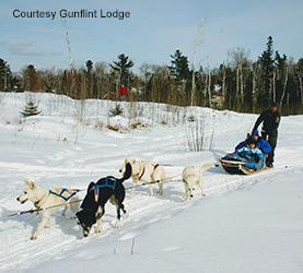 Gunflint Lodge dog sledding