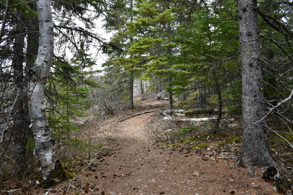 Onion River Hiking Trail -Spring