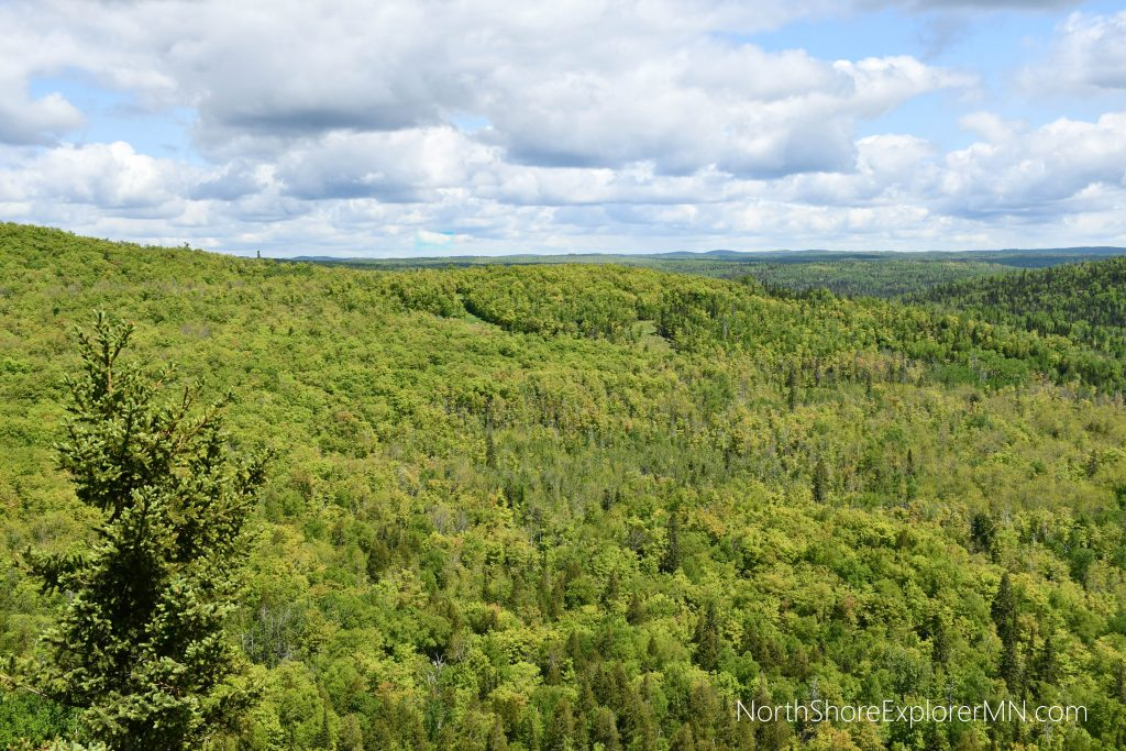 View of Superior National Forest from Moose Mountain