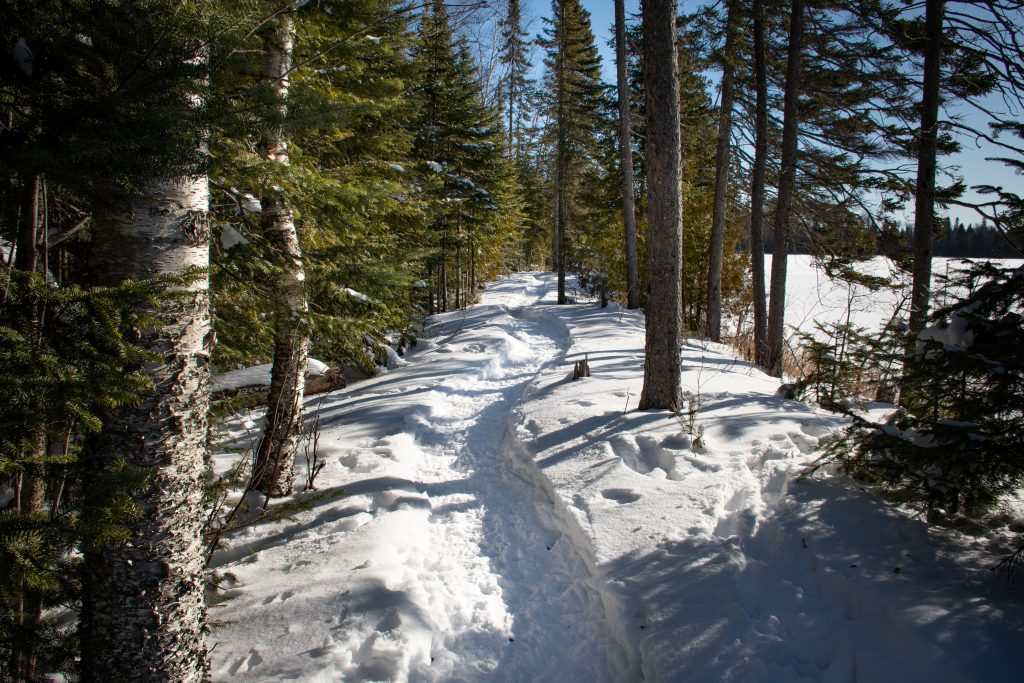 winter hiking trail on the North Shore MN